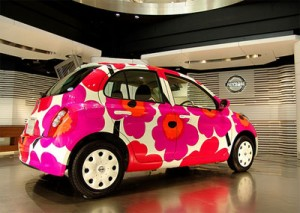 Eco Painted Car