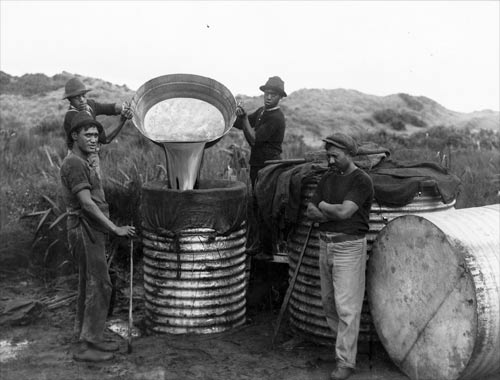 Whale Oil Being Poured Into Barrels