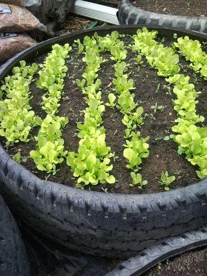 DIY Ideas: Tire Planter