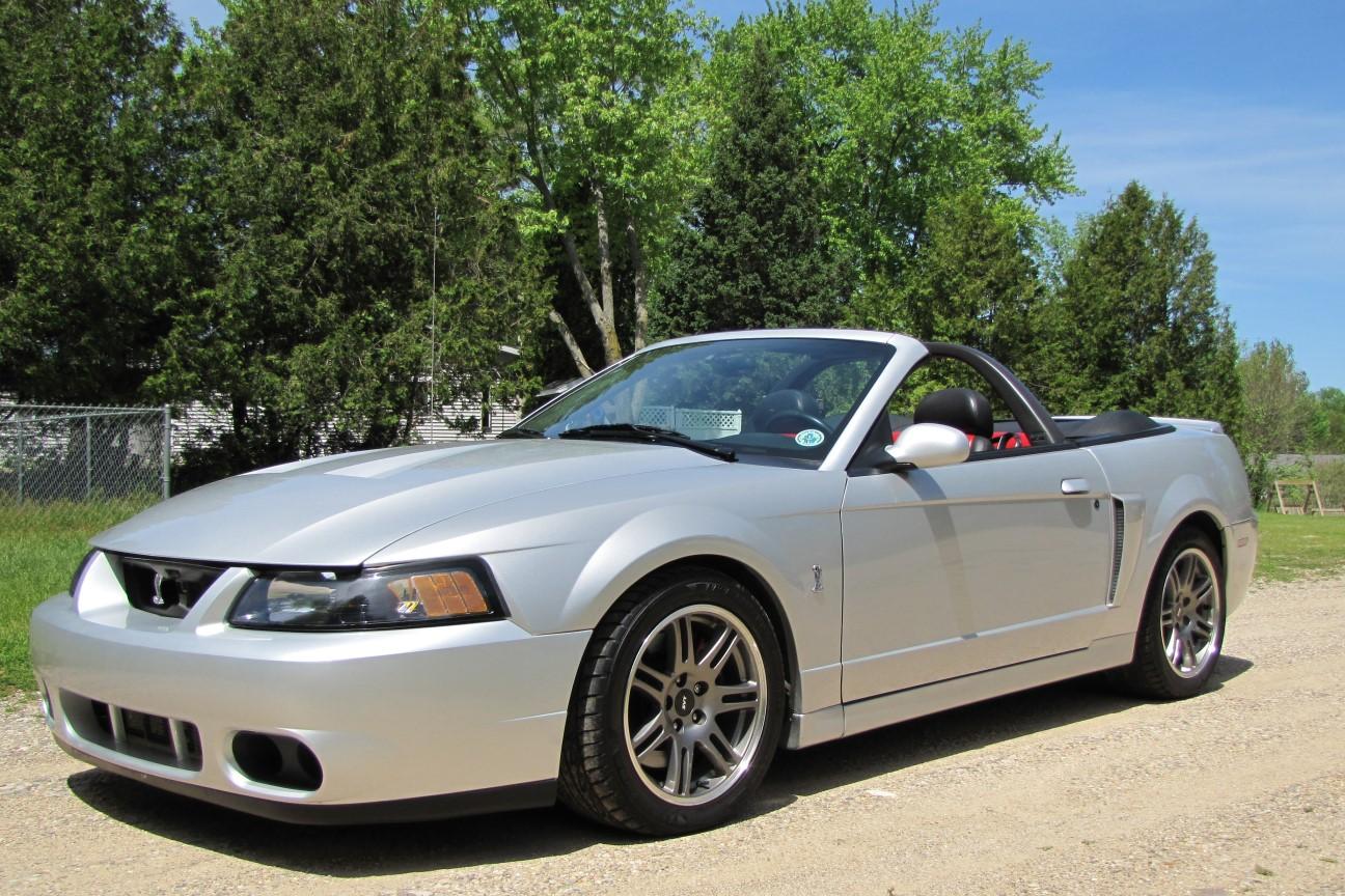 Flashback 2003 2004 Mustang Svt Cobra