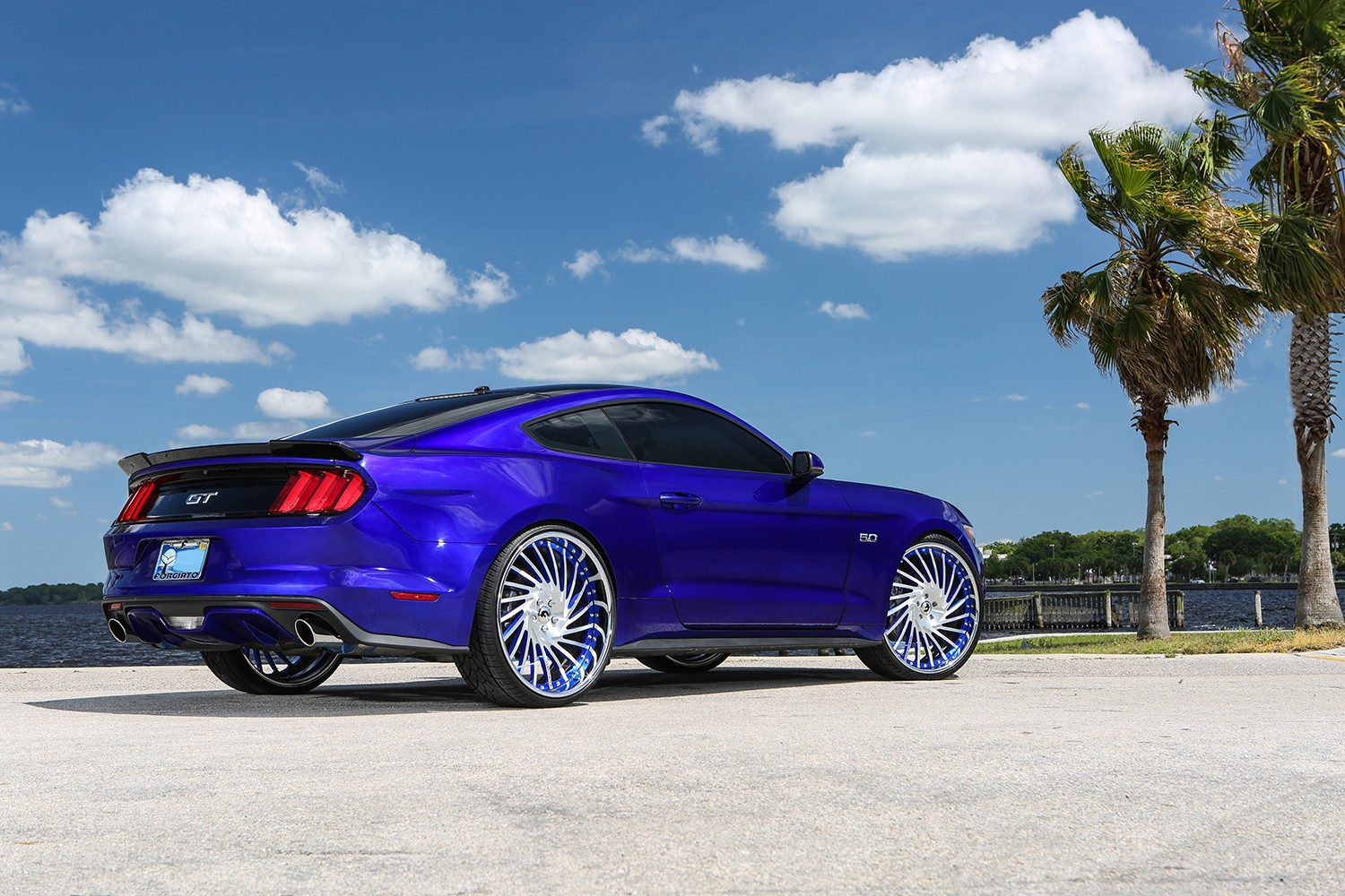 royal-pony-express-ford-mustang-by-forgiato-has-oversized-wheels_8