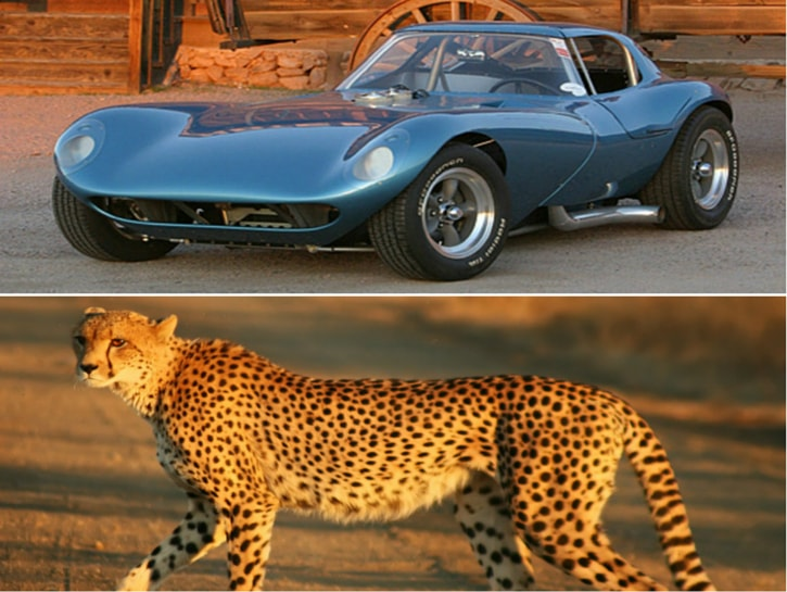 #17. Chevy Cheetah - vehicles named after animals