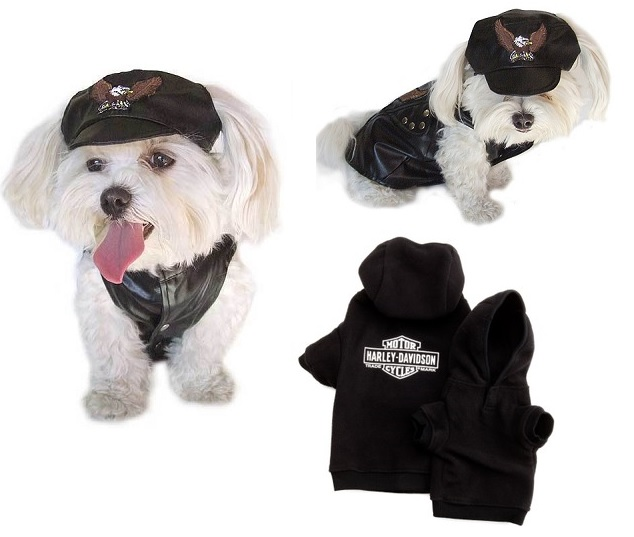 Bar & Shield dog clothes