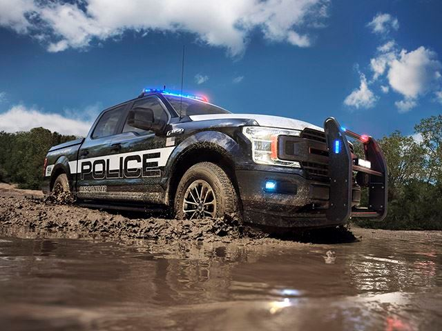 Ford F-150 Police 4