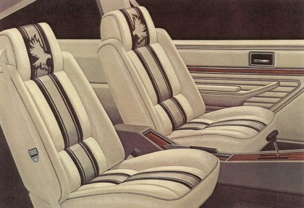 1979-1980 Skyhawk Roadhawk Interior