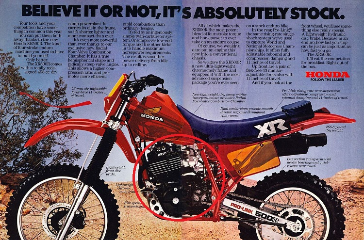 Scrambler Motorcycle - Big Single