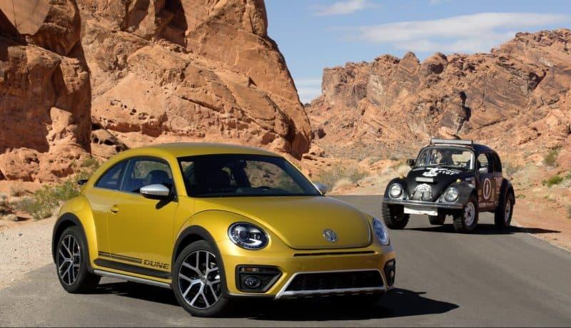 What's Hot And What's Not in the 2019 Volkswagen Lineup