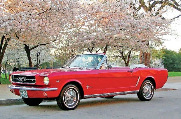 "1964 Ford Mustang Convertible ""The Flying Squirrel"""
