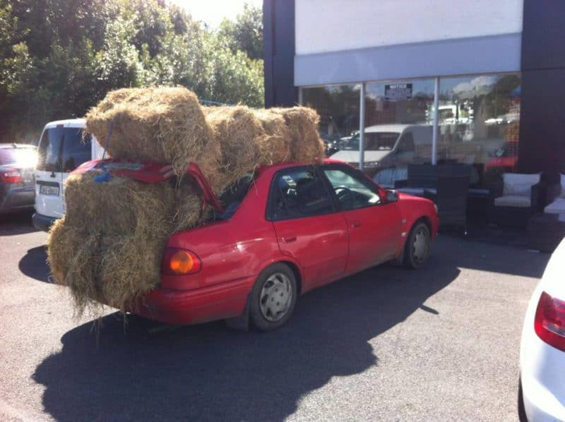 Transporting hay in your car is illegal in Australia
