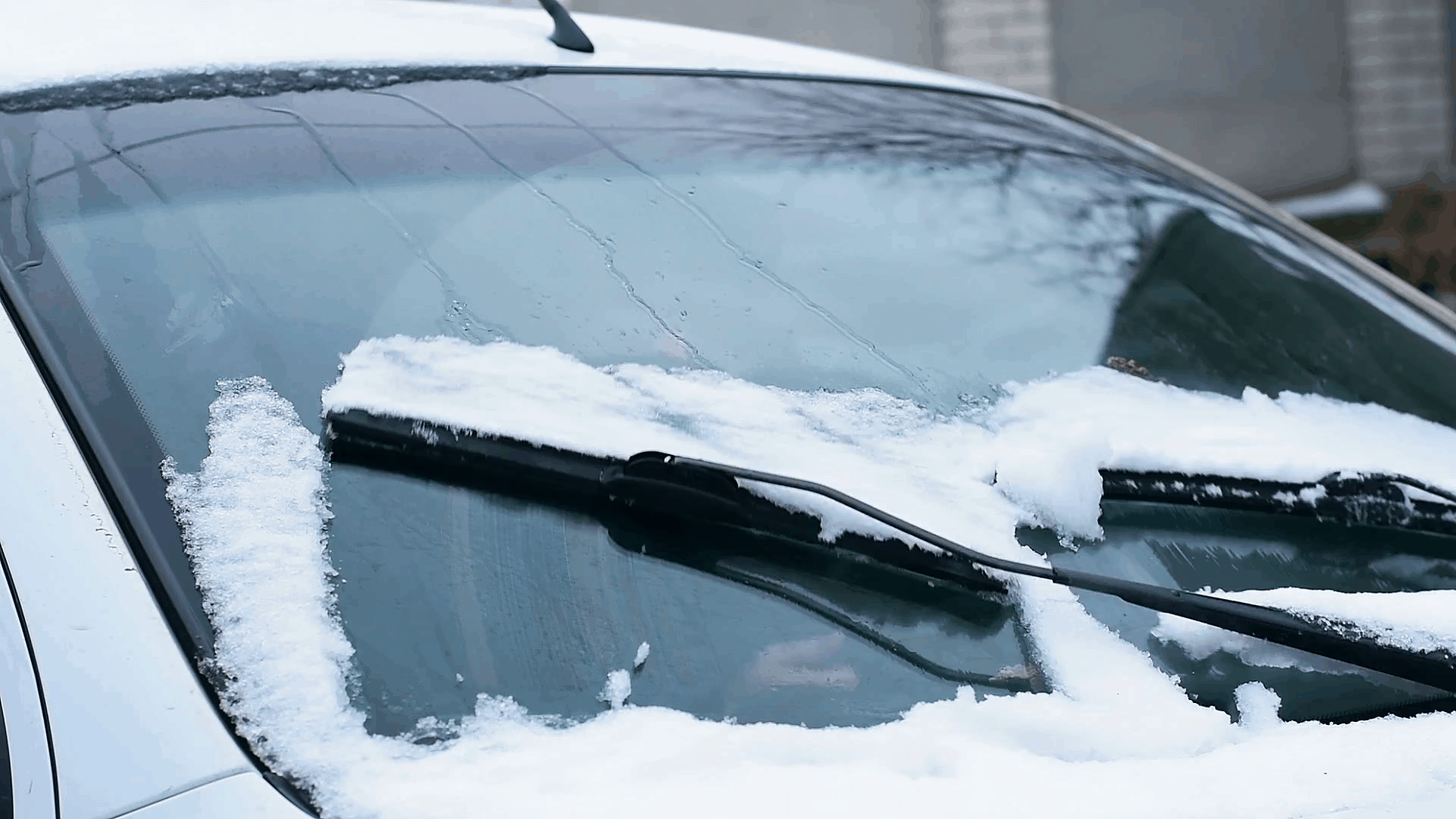 Windshield wipers working on a snowy vehicle
