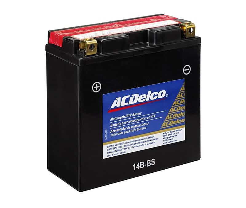 ACDelco Speciality Battery