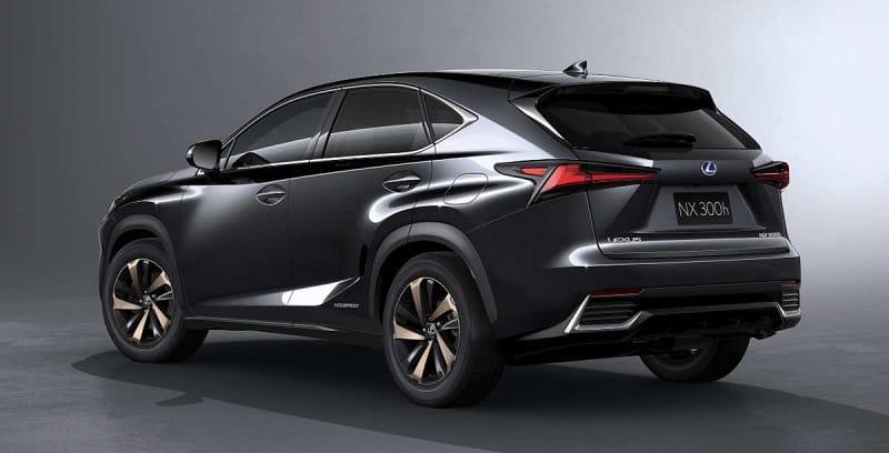 2021 Lexus NX Rear View