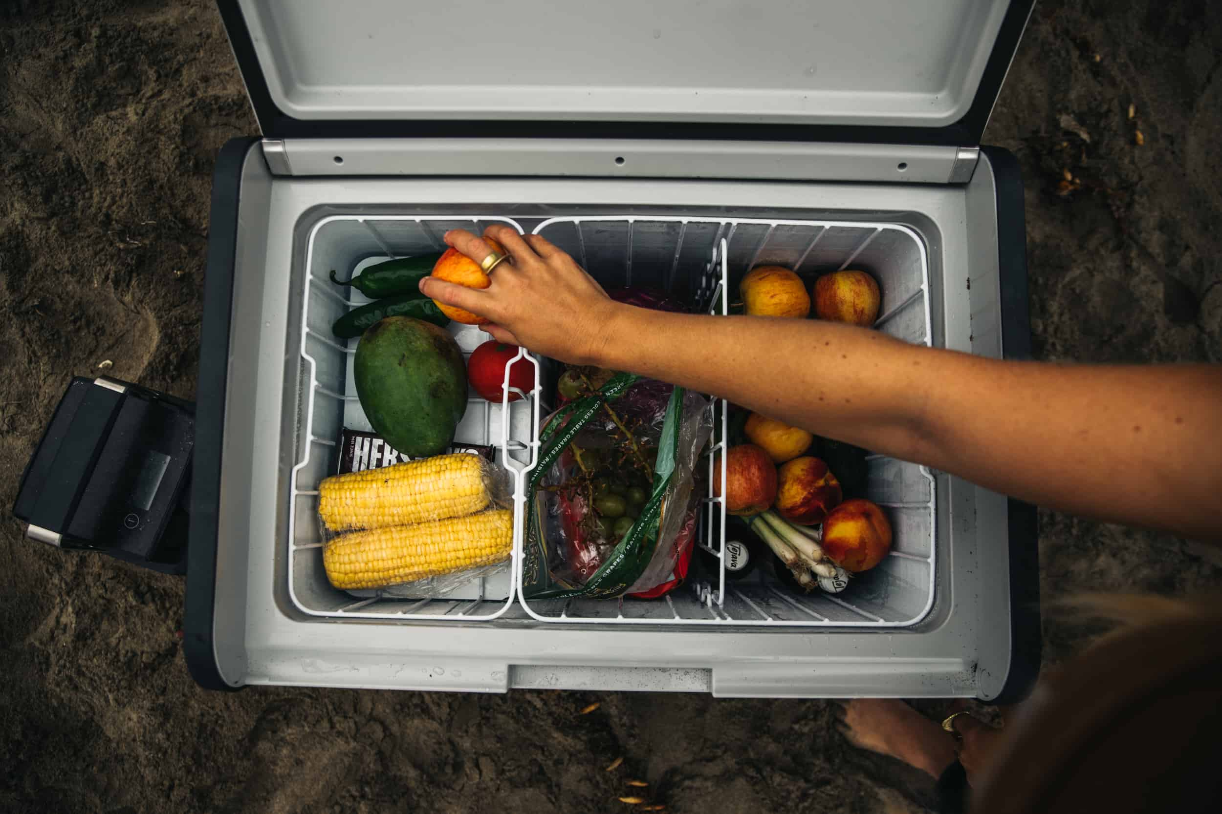 Dometic CFX3 55IM with lots of fruits and veggies in the 12V portable fridge