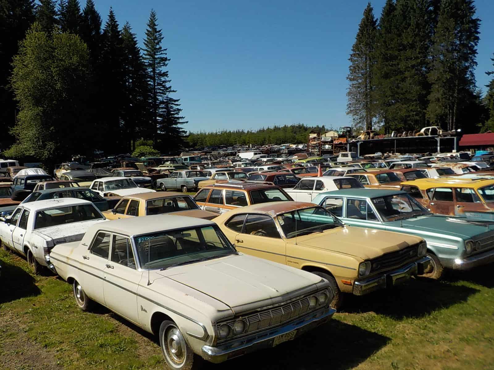 Wildcat Auto Wrecking best junkyard