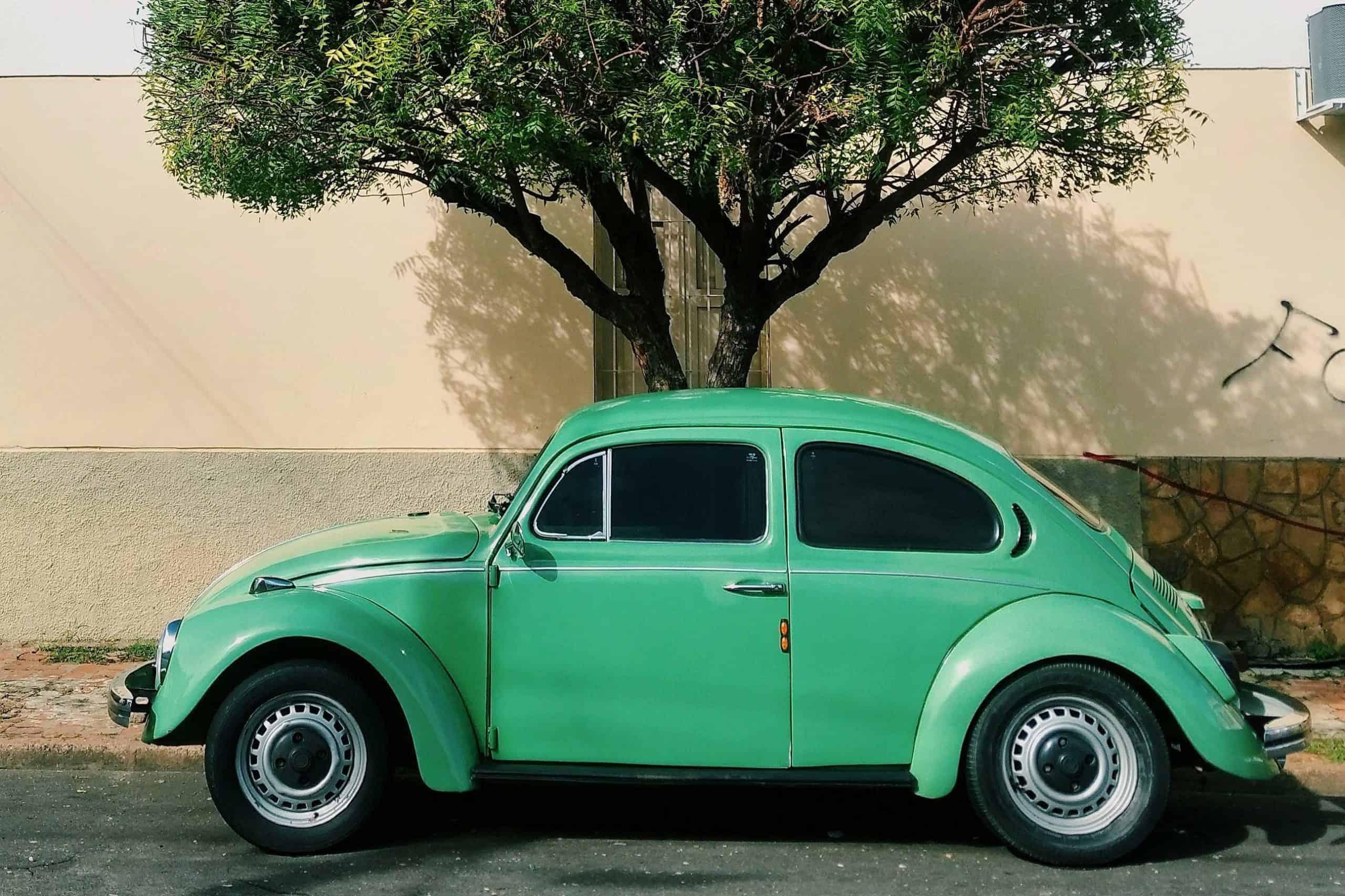 green vw beetle classic
